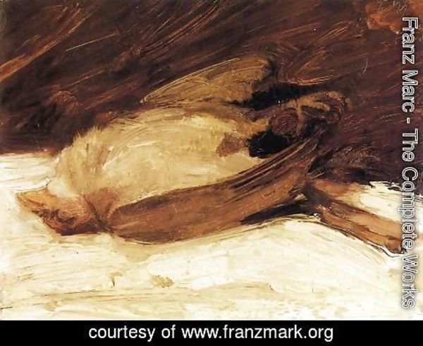 Franz Marc - The Dead Sparrow